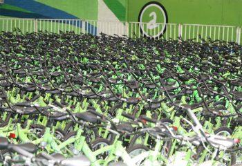 Tu Primera Bici: comenzó la entrega 2019 para los ingresantes a la escuela primaria